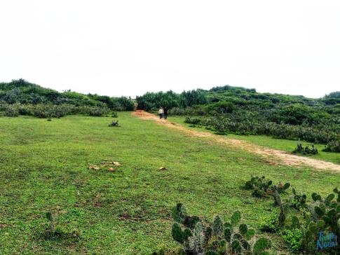 2 ngày trải nghiệm vùng đất Hoa vàng trên cỏ xanh 19
