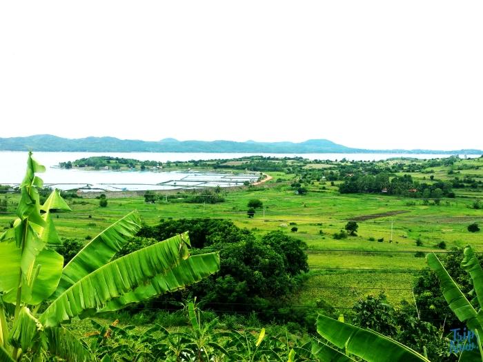 2 ngày trải nghiệm vùng đất Hoa vàng trên cỏ xanh 4.jpg