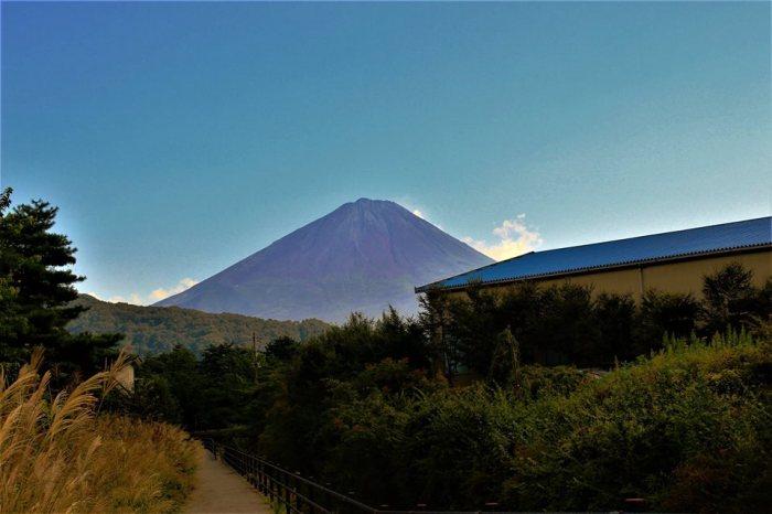 Kinh nghiệm đi Phú Sĩ Ngũ Hồ (Fuji Five Lakes) 27